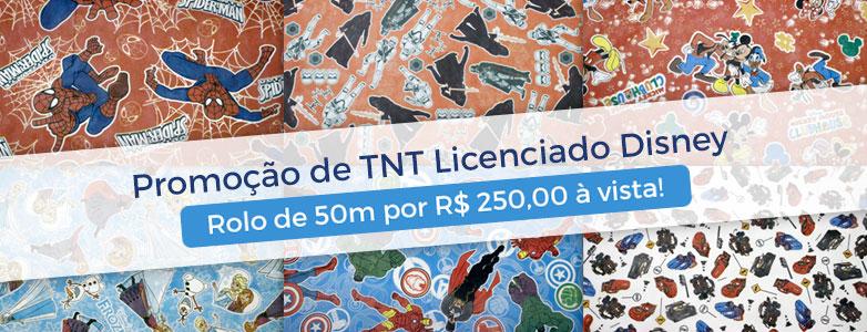 TNT Licenciado Disney